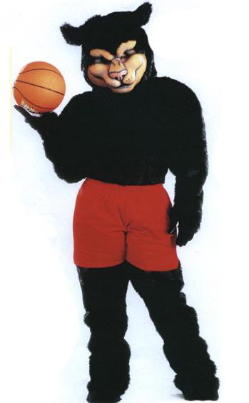 Pro Panther Mascot Costume 314