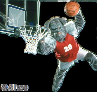 Pro Bulldog Mascot Costume 330