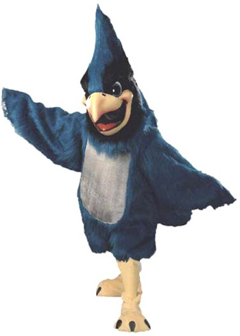 Big Blue Blue Jay Mascot Costume 412